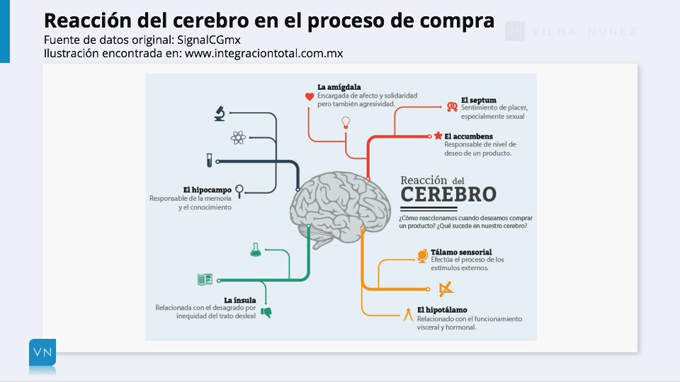 reacciones cerebro neuromarketing
