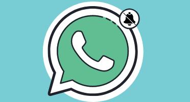 VN Whatsapp permite silenciar grupos para siempre
